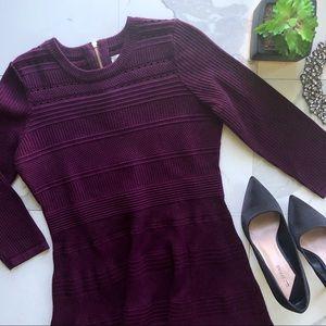 Eliza J. Fit & Flare Purple Knit Long Sleeve Dress